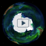 A year from the Antarctic