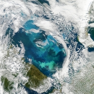 Phytoplankton bloom observed in the Barents Sea
