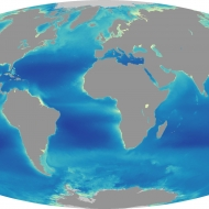 Average chlorophyll concentration in the surface ocean